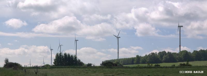 Eoliennes à Bastogne & Thynes(Dinant) Eoliennen401