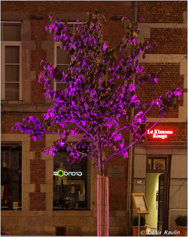 Photos de Nuit à Namur du 19 novembre: les photos. Namur_nuit04